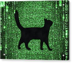 Acrylic Print featuring the digital art Cat In The Matrix Black And Green by Matthias Hauser