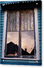 Cat In The Window Acrylic Print