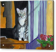 Cat In Window Acrylic Print