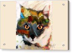 Cat Magic Acrylic Print