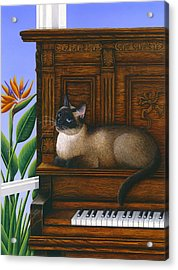 Cat Missy On Piano Acrylic Print by Carol Wilson