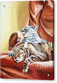 Cat Nap Acrylic Print by Dominic White