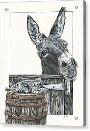 Cat On A Barrel Acrylic Print