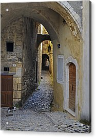 Acrylic Print featuring the photograph Cat On A Quiet Street In Viviers by Allen Sheffield