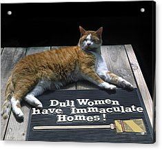 Acrylic Print featuring the photograph Cat On Dull Women Mat by Sally Weigand