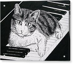 Cat On Piano Acrylic Print