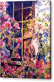 Cat On The Sill In Trapani Acrylic Print by Joyce Kanyuk