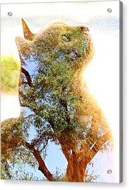 Cat Or Tree Acrylic Print
