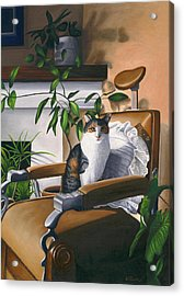 Cat Sitting In Barber Chair Acrylic Print by Carol Wilson