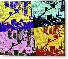 Cat Story Acrylic Print by Tetyana Kokhanets