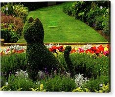 Cat Topiary Belfast Acrylic Print