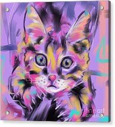 Cat Wild Thing Acrylic Print