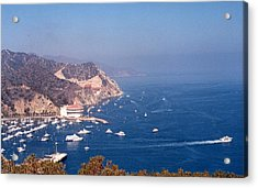 Acrylic Print featuring the photograph Catalina Calif............ by Tanya Tanski