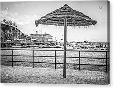Catalina Island Umbrella In Black And White Acrylic Print