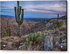 Catalina Mountains Color Sunset Acrylic Print