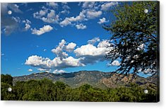 Acrylic Print featuring the photograph Catalina Mountains H48 by Mark Myhaver