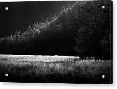 Cataloochee Morning Acrylic Print