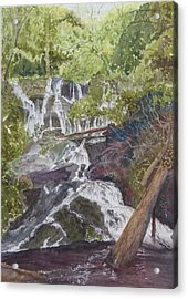 Acrylic Print featuring the painting Catawba Falls - Working Notes by Joel Deutsch