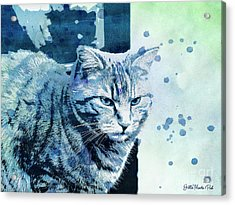 Acrylic Print featuring the digital art Catbird Seat by Jutta Maria Pusl