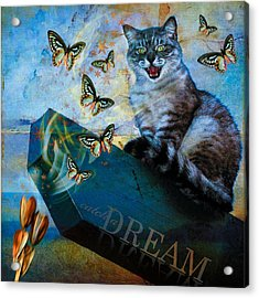 Catch A Dream Acrylic Print
