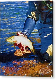 Catch And Release Acrylic Print by Diane E Berry