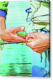 Catch And Release Rainbow Trout Retro Colors Acrylic Print