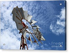 Acrylic Print featuring the photograph Catching The Breeze by Stephen Mitchell