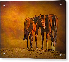 Catching The Last Sun Photoart Acrylic Print