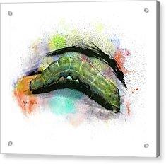 Caterpillar Drawing Acrylic Print