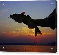 Catfish At Sunrise Acrylic Print by Ron Kruger