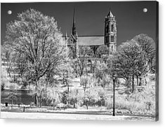 Acrylic Print featuring the photograph Cathedral Basilica Of The Sacred Heart Ir by Susan Candelario