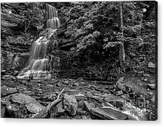 Cathedral Falls Black And White Acrylic Print by Thomas R Fletcher
