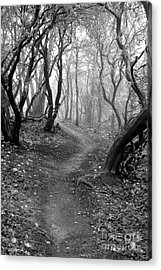Cathedral Hills Serenity In Black And White Acrylic Print