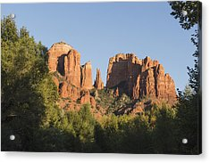 Cathedral In The Trees Acrylic Print