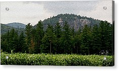 Cathedral Ledge North Conway Nh Acrylic Print by Paul Gaj