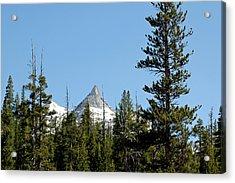 Cathedral Peak Mountains Of Yosemite Acrylic Print by LeeAnn McLaneGoetz McLaneGoetzStudioLLCcom