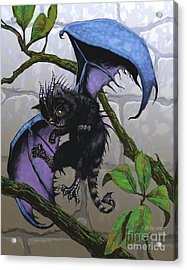Catragon Acrylic Print by Stanley Morrison
