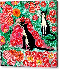 Cats And Roses Acrylic Print by Sushila Burgess