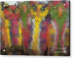 Cats Acrylic Print by Don Phillips