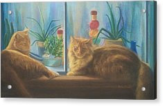 Cats In The Window Acrylic Print by Diane Caudle