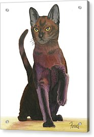 Acrylic Print featuring the painting Cats Meow by Ferrel Cordle