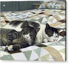 Cats On The Quilt Acrylic Print by Alecia Underhill