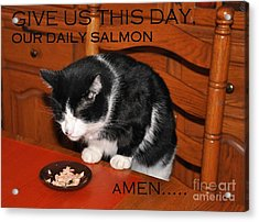 Cat's Prayer Revisited By Teddy The Ninja Cat Acrylic Print