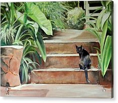 Cats Rule Acrylic Print by George Kramer
