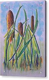 Cattails #5 Acrylic Print