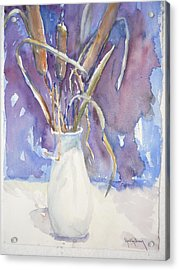 Cattails On White Acrylic Print by Dorothy Herron