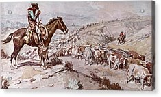 Cattle Drive Acrylic Print by Charles Marion Russell