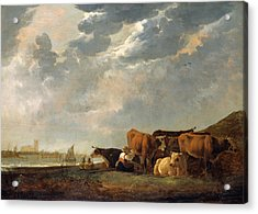 Cattle Near The Maas, With Dordrecht In The Distance Acrylic Print