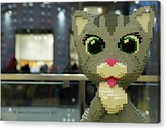 Acrylic Print featuring the photograph Caturday In Legoville by Lora Lee Chapman