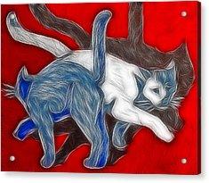 Catwalk Acrylic Print by Joachim G Pinkawa